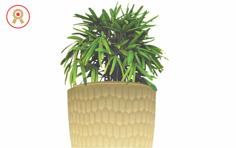 Elegant Range of Planters for Homes & Hospitality.